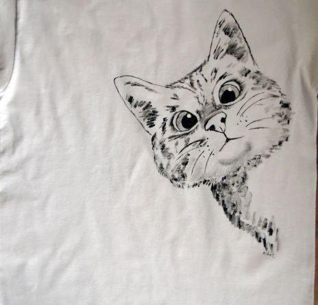 Pisica curioasa
